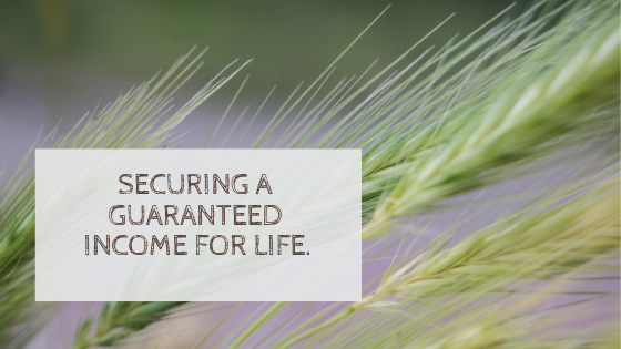 Securing a Guaranteed Income For Life.